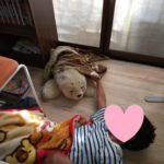 9月19日くさかのお家でのひとコマ